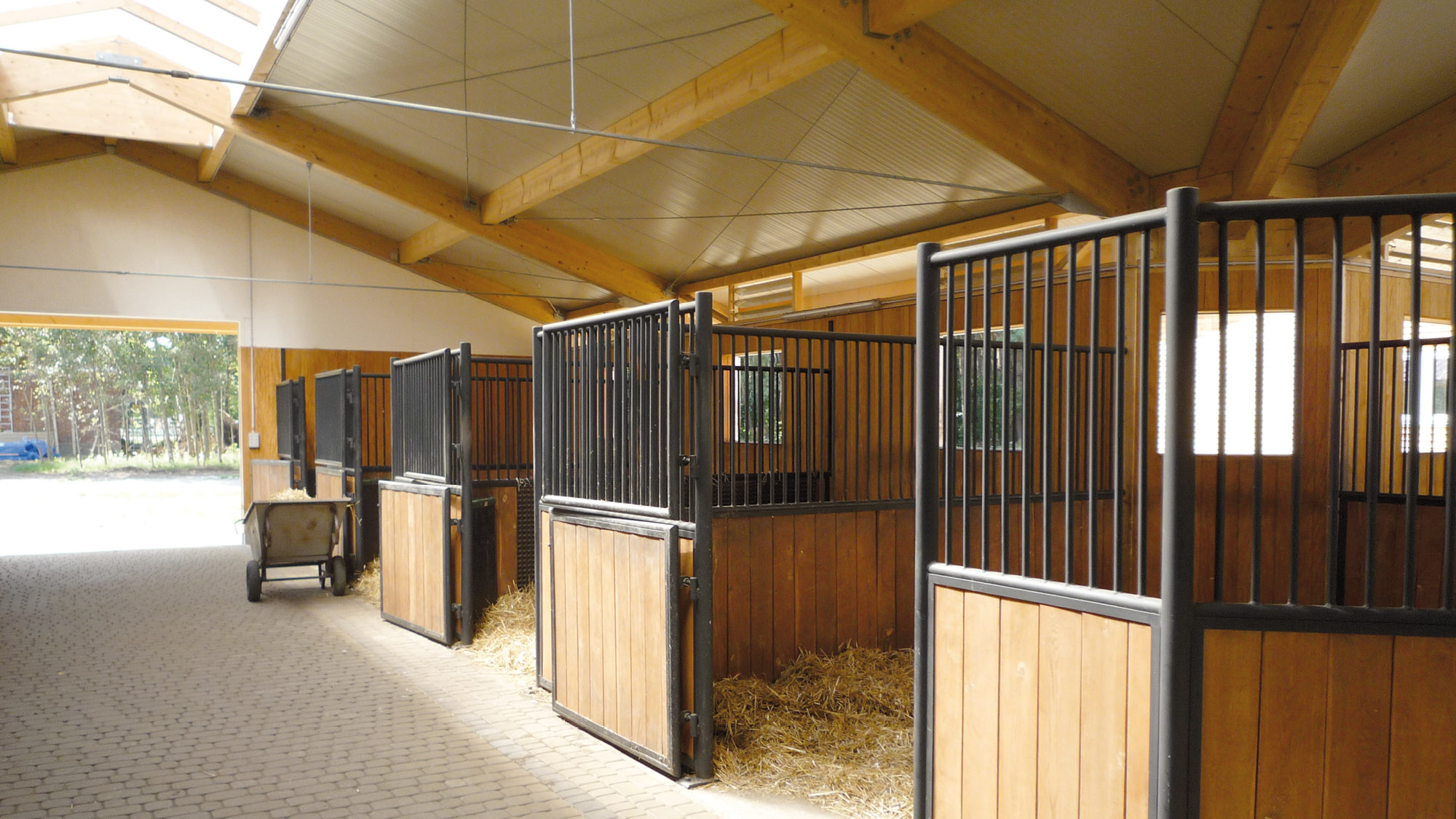 Hansen-Reitanlage-Grojec-Polen-2009-04