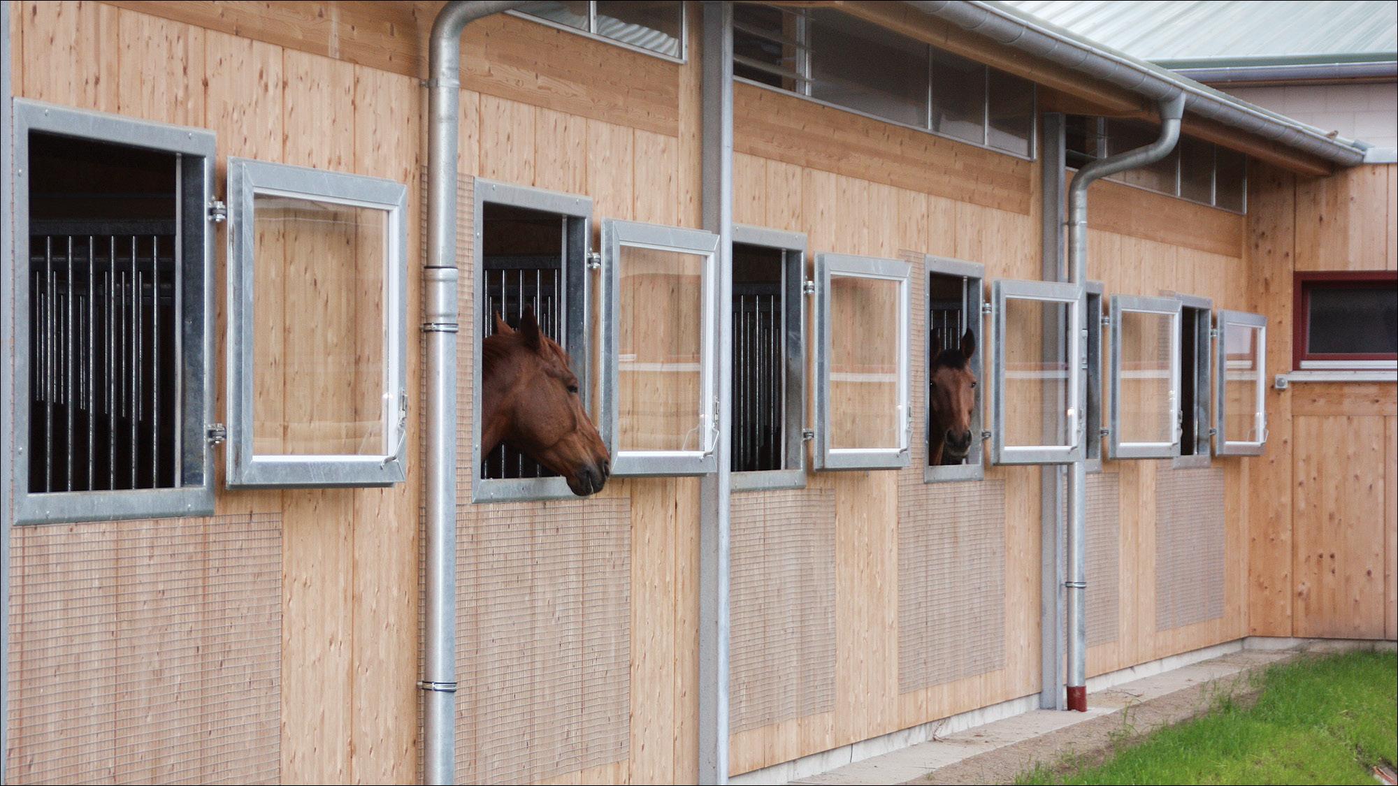 hubertushof-freitag-pferdestallungen-reithalle-2012-10