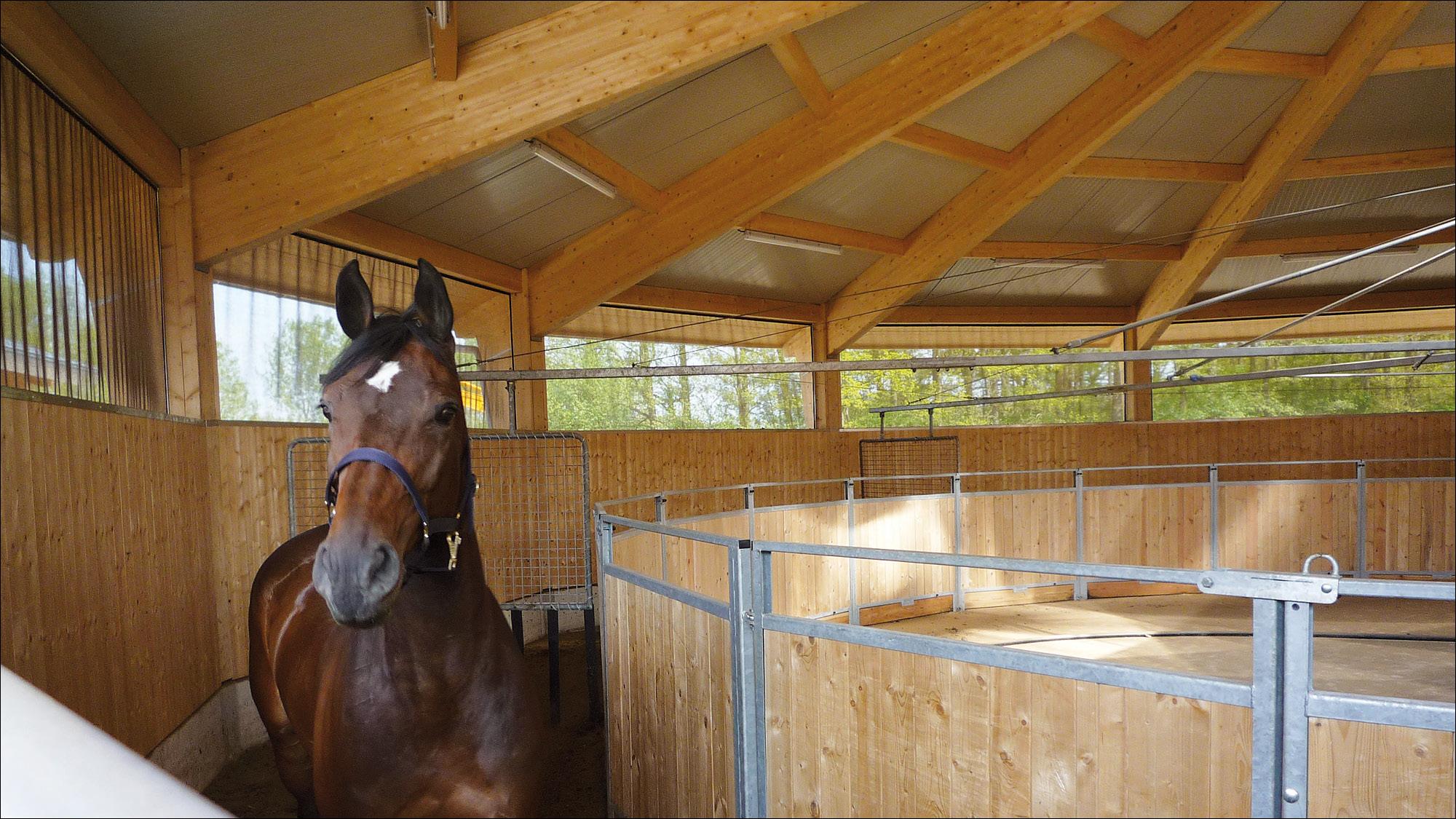 oosterbrook-niederlande-reitanlagenbau-fuegranlage-2011-13